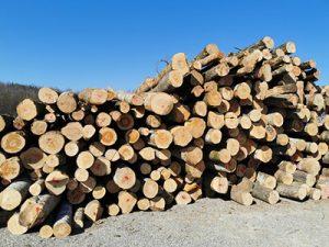 Feuerholz aus der Region