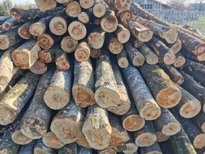 Feuerholz regional